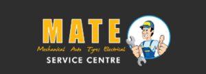 Mate Logo Landing